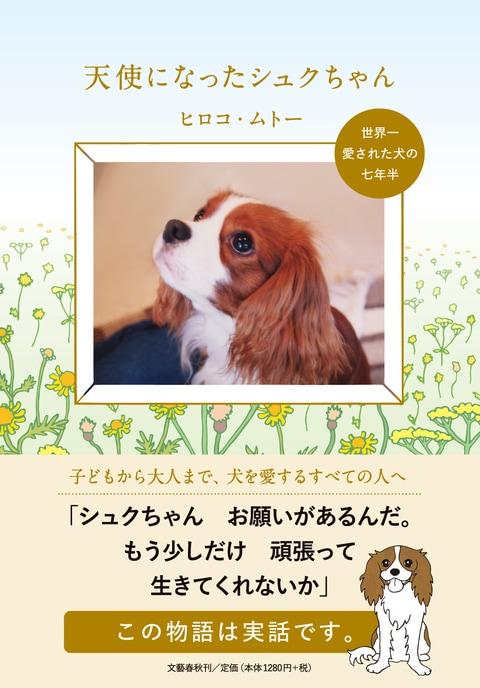 十年間、大切に保管された<br />心臓病の犬と家族の「幸福な物語」