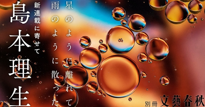 島本理生「自分がこんな小説を書くなんて数週間前まで考えもしなかった。」