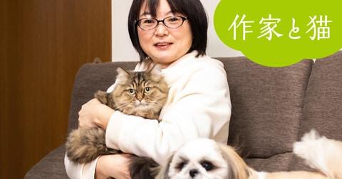 <作家と猫(5)>望月麻衣「家族全員が猫の虜」