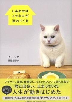 """韓国でいちばん有名な""""ふつうの猫""""ヒックのフォトエッセイ!『しあわせはノラネコが連れてくる』"""
