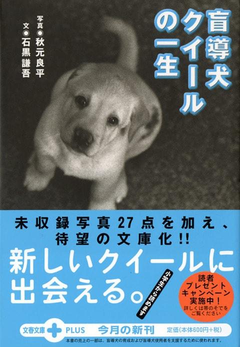 親子で読みたい文庫版『盲導犬クイールの一生』