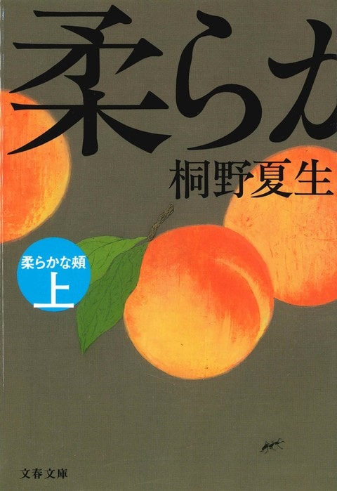 〈特集〉桐野夏生の衝撃<br />強い虚構性は現実と拮抗しうる