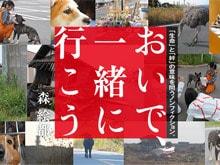 東北大震災、福島原発20キロ圏内のペットレスキュー 森 絵都『おいで、一緒に行こう』