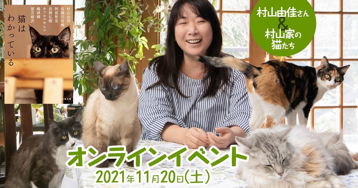 【オンラインイベント】文春文庫『猫はわかっている』刊行記念 村山由佳さん&村山家の猫たちによるライブ配信イベントを開催!